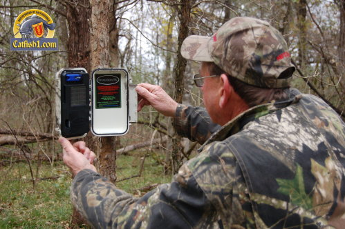 Trail Cameras Make Scouting Easy