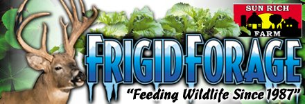 Frigid Forage Joins BHN
