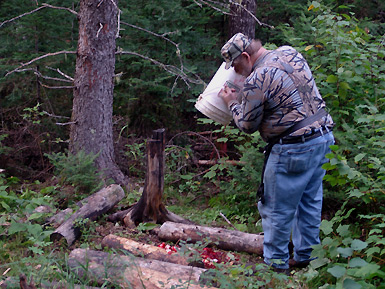 Bear Hunt 2010 – Setting Up
