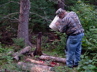 Bear Hunt 2010 – Setting Up