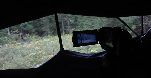 Bear Hunt – Fred Lutger, Part 1