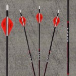 New VAP arrows with Penetrator Inserts