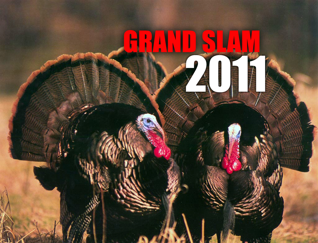 2011 Grand Slam Teaser Video