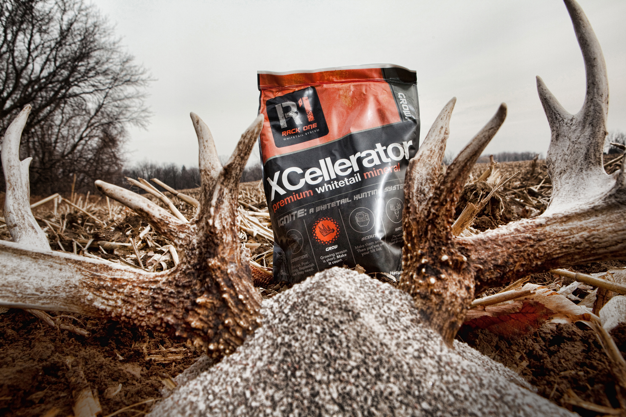 Xcellerator Premium Mineral Supplement