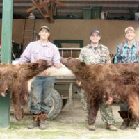 Left to right, Derrick Nawrocki, Cody Korell, Jason Bear, and Chris Korell with Derrick and Jason's beautiful bear hides.