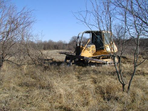 Turning Unproductive Land Into Prime Habitat