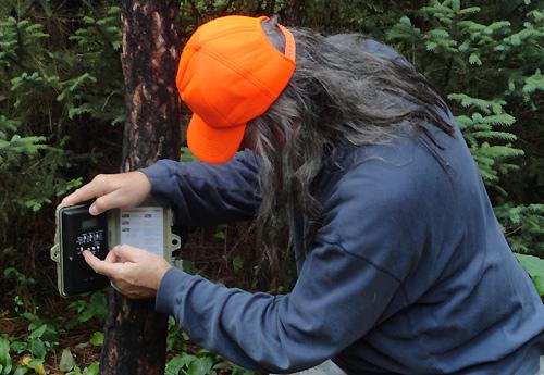 Gathering Bear Activity Info & Pics