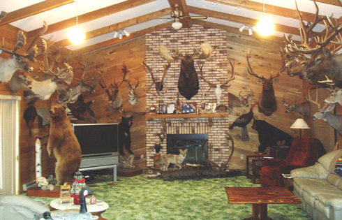 Trophy Room Bowhunting Net