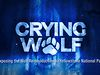 Crying Wolf Movie: by JD King