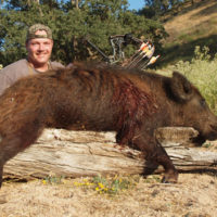 Author with his red tejon boar.