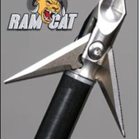 500-Ram-Cat
