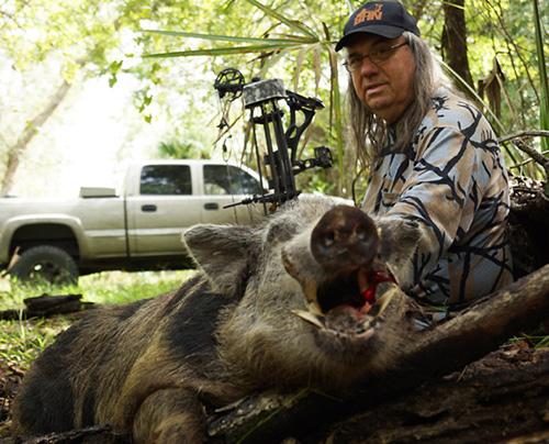 Wild Boar Day