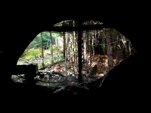 Maine Bearhunt: The Ground Blind