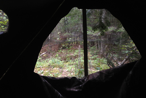 Maine Bear Hunt – Last Outing