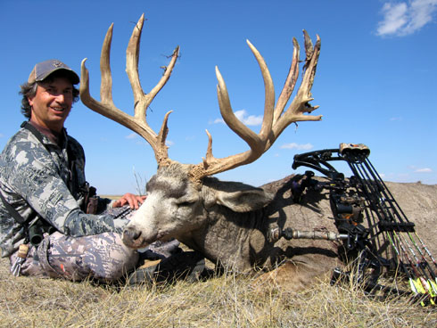 Eastern Plains Colorado Mule Deer