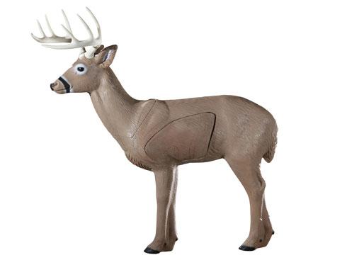 Woodland Buck from Rinehart Targets