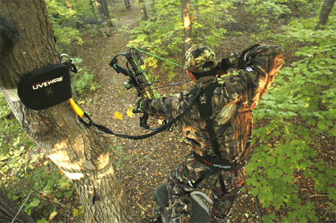 zzzRobtree 1 why not wearing safety harnesses? bowhunting net live wire safety harness hunting at alyssarenee.co