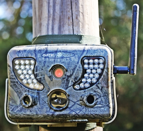 GEAR REVIEW: SpyPoint's Tiny-W2 Trail Camera