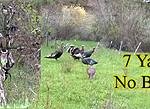 HECS-Turkeys-Hunter
