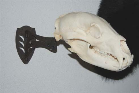 Gear Review: The Skull Hooker