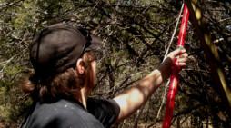 Wild Hogs: A New Hammer Hole Set Up