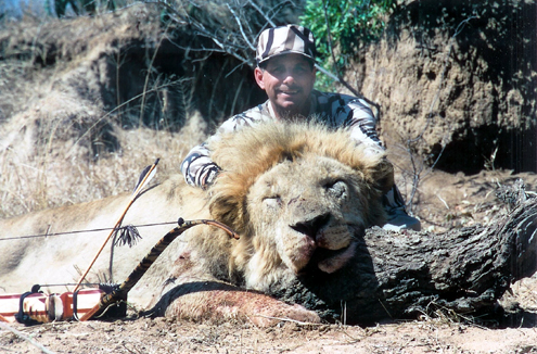 Saving Lion Hunting Saves Lions