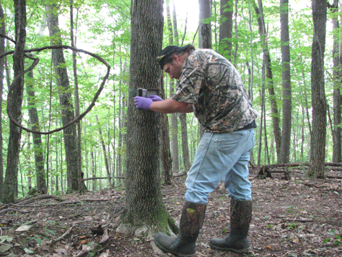 Hunting Guide Sam Zirkle sets up his Spypoint Trail Camera while wearing Treeline 8.5 SP boots by Grubs Boots, sprayed with Scent Elimination spray.