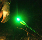 Light Em Up: Carbon Express LaunchPad Precision Lighted Arrow Nock