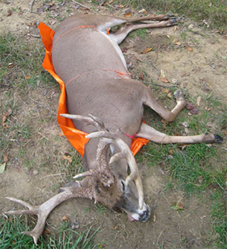 The Game Glide Deer Sled from Altus Brands