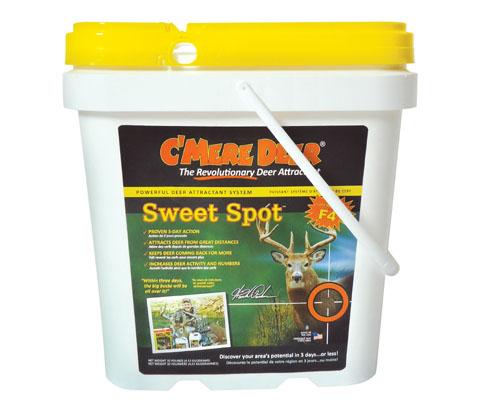 SweetSpot-495