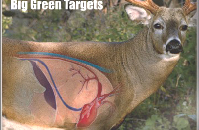 Add a Little Life to Target Shooting