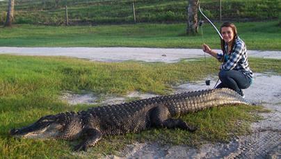 DIY Florida Alligator Bowhunting