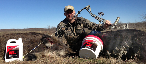 Hog populations have gone wild  in the US. The author is doing his part to reduce that number.