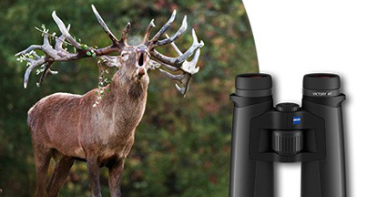 Hunting Tip From Carl Zeiss on Stalking