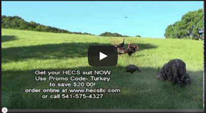 FEATURED VIDEO: Turkeys: Get Closer With HECS