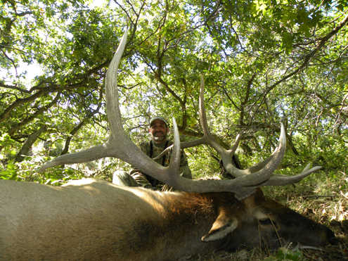 Bowhunting for elk is demanding and you have to be in shape. The author was for this hunt and it paid off.