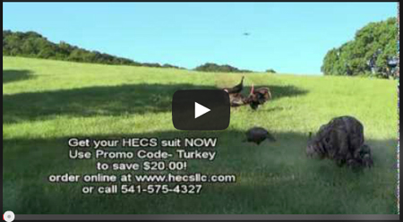 If you want see a hunter crawl up to three turkeys and not get busted: CLICK HERE.