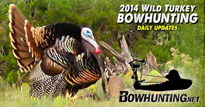 South Texas Rio Grande Turkey Hunt