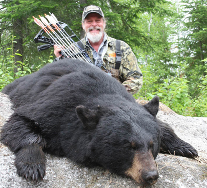Quebec Bear 2013