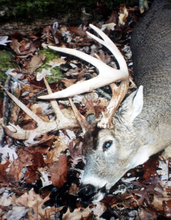 "If you could take a nice buck like this, would you ""borrow"" and hunt from another hunter's empty stand without permission?"