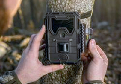 Bushnell Trophy Cam HD Series