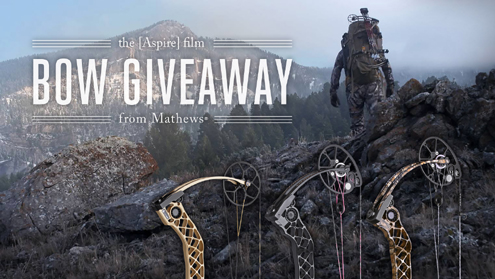 Aspire Film Bow Giveaway - by Mathews