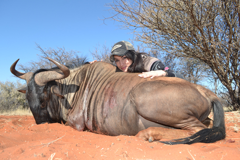 Nicole McClain with her massive wildebeest.