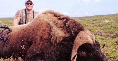 P&Y Announces Potential World Record Muskox