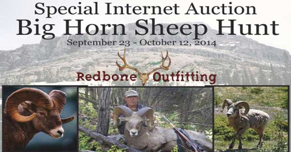 SCI Foundation Auctions Bighorn Sheep Hunt