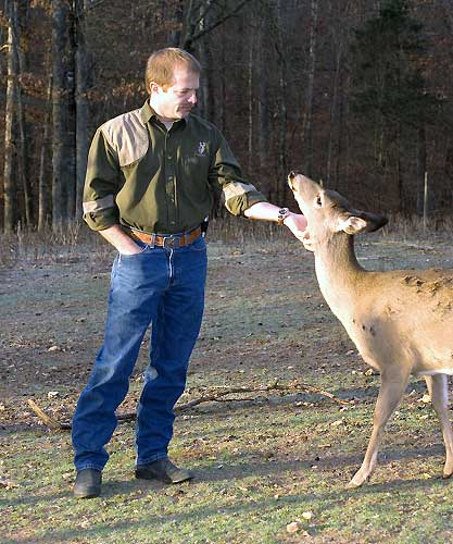 Dr. Miller with one of his captive deer at the deer study area. Whitetails exhibit most of their habits and behaviors in captivity as they do in the wild.