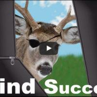 WN-Blind-Tips