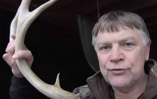 Antler Sheds: When? How? Why? Where?
