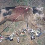 2Jeremy-2011-Pig