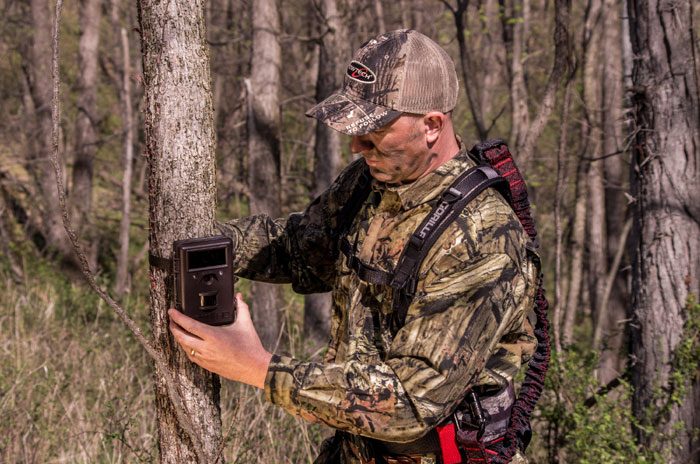 Early Scouting for Deer: Use Trail Cameras After Feeders are Removed